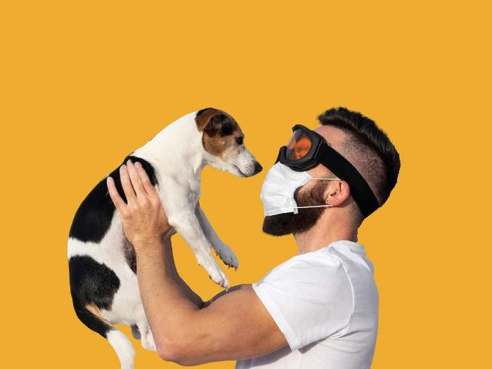 covid 19: can i still kiss my dog
