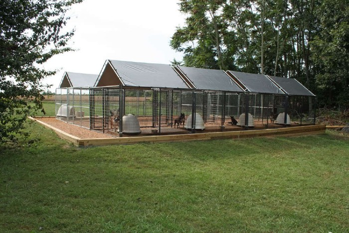why most dog kennels fail