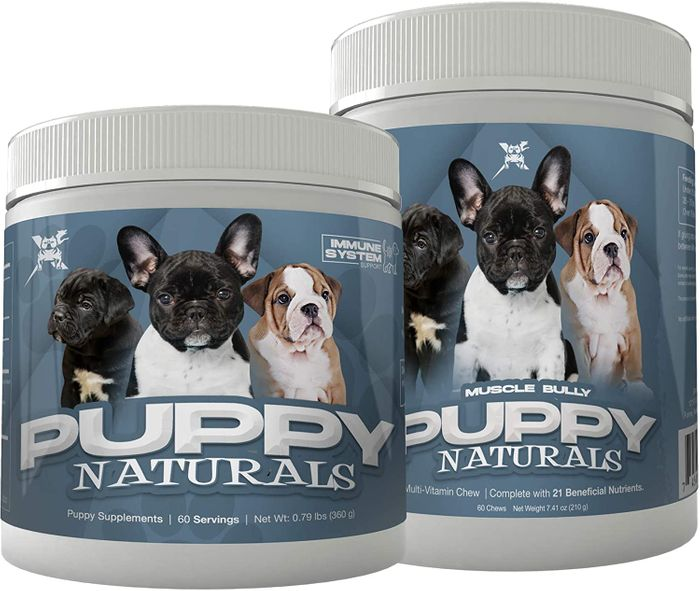 supplements for american bully puppy